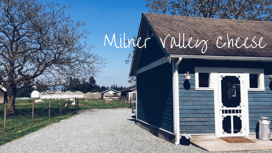 Milner Valley Cheese-2